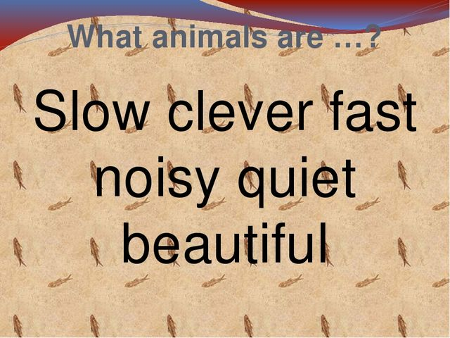 What animals are …? Slow clever fast noisy quiet beautiful