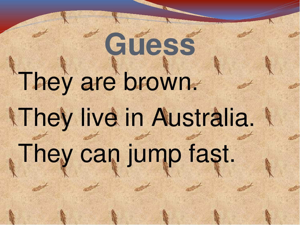 Guess They are brown. They live in Australia. They can jump fast.