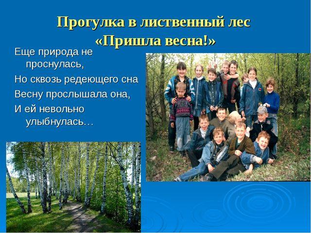 Прогулка в лиственный лес «Пришла весна!» Еще природа не проснулась, Но сквоз...