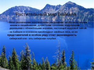 Растительный мир Байкала. - богат различными экзотическими растениями: необык
