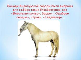 Лошади Андалузской породыбыли выбраны для съёмок таких блокбастеров, как «Вл