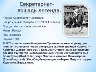 Кличка: Секретариат (Secretariat) Год рождения: 30 марта 1970-1989 4 октября