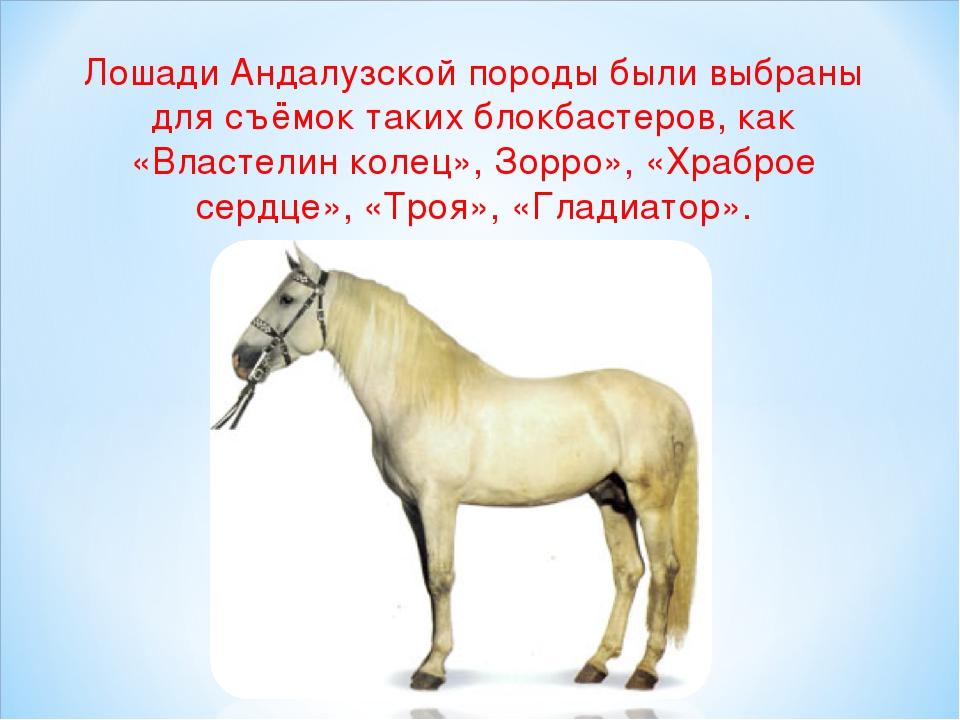 Лошади Андалузской породыбыли выбраны для съёмок таких блокбастеров, как «Вл...