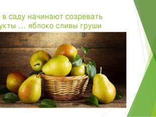 ... а в саду начинают созревать фрукты … яблоко сливы груши