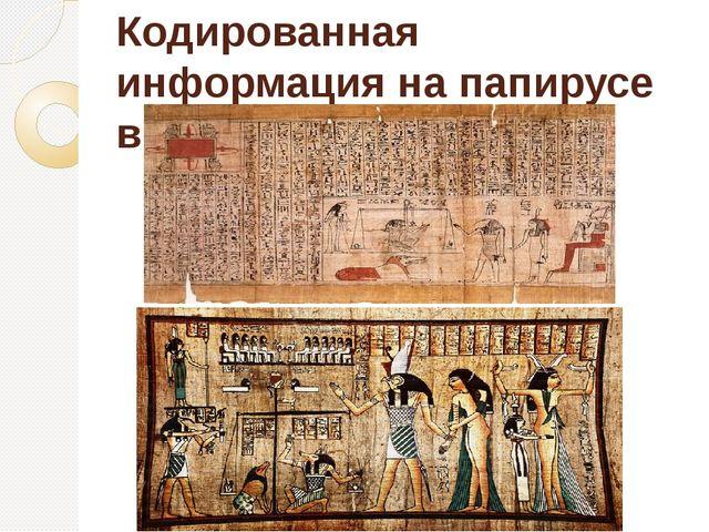 Кодированная информация на папирусе в Древнем Египте