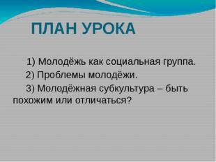ПЛАН УРОКА 1) Молодёжь как социальная группа. 2) Проблемы молодёжи. 3) Молод