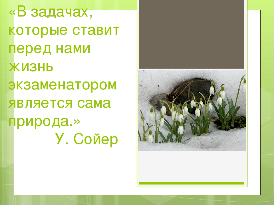 «В задачах, которые ставит перед нами жизнь экзаменатором является сама приро...