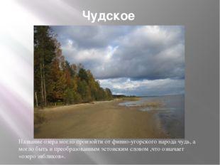 Чудское Название озера могло произойти от финно-угорского народа чудь, а могл