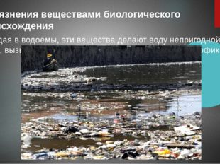 Загрязнения веществами биологического происхождения Попадая в водоемы, эти в
