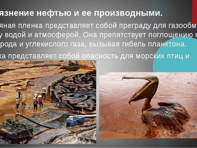 Загрязнение нефтью и ее производными. Нефтяная пленка представляет собой пре...