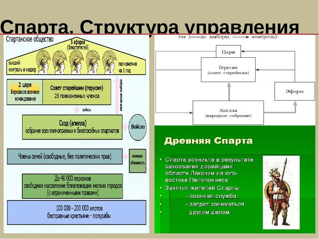 Спарта. Структура управления