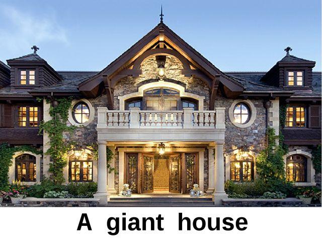 A giant house