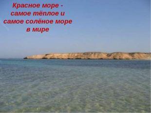Красное море - самое тёплое и самое солёное море в мире