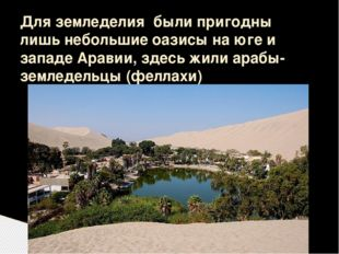 Для земледелия были пригодны лишь небольшие оазисы на юге и западе Аравии, зд