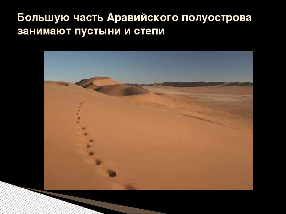Большую часть Аравийского полуострова занимают пустыни и степи