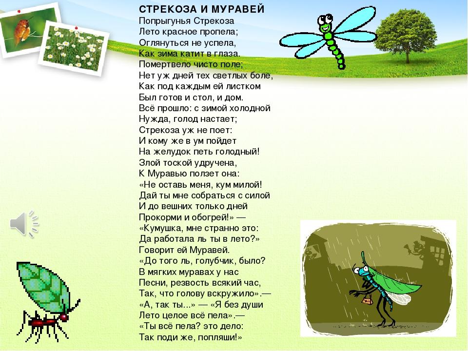 стихи про стрекозу продвижения длинноволновую область