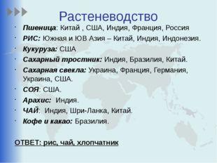Растеневодство Пшеница: Китай , США, Индия, Франция, Россия РИС: Южная и ЮВ А