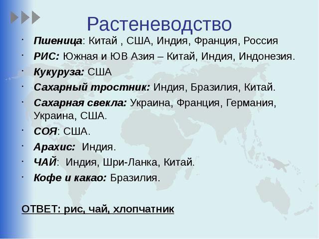 Растеневодство Пшеница: Китай , США, Индия, Франция, Россия РИС: Южная и ЮВ А...