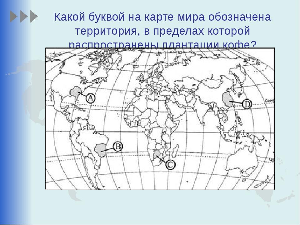 Какой буквой на карте мира обозначена территория, в пределах которой распрост...