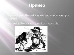 Пример Например: рус. Важный как павлин; глядит как гусь на зарево Англ. stri
