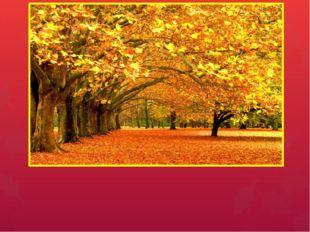 Осень Презентация содержит информацию о приметах осени, осенних месяцах, о по