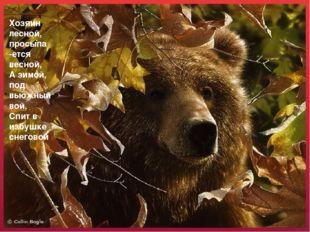Хозяин лесной, просыпа -ется весной, А зимой, под вьюжный вой, Спит в избушке