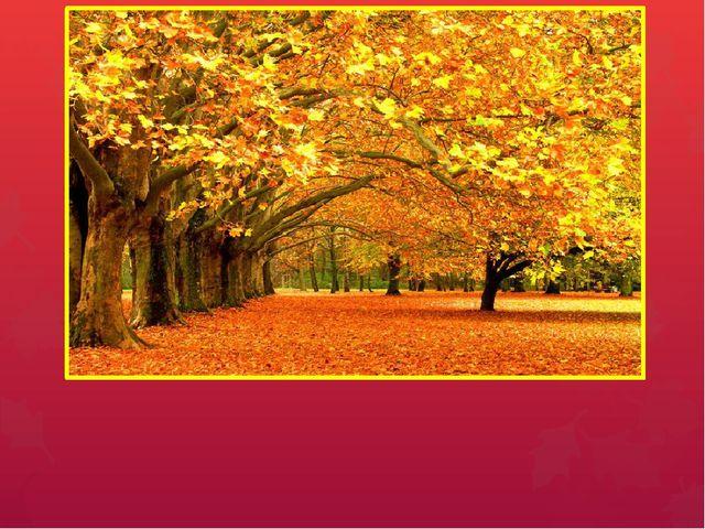 Осень Презентация содержит информацию о приметах осени, осенних месяцах, о по...