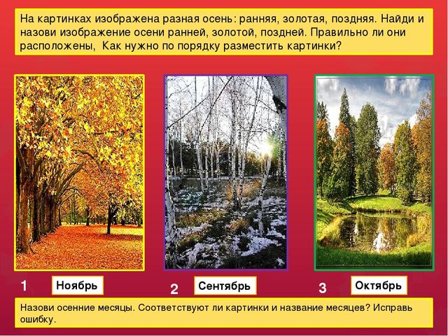 На картинках изображена разная осень: ранняя, золотая, поздняя. Найди и назов...