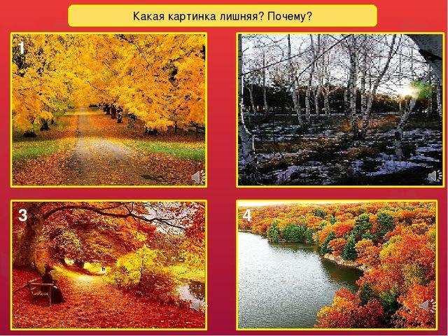 Какая картинка лишняя? Почему? 1 2 3 4 Лишняя картинка № 2 (поздняя осень)