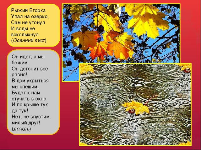 Рыжий Егорка Упал на озерко, Сам не утонул И воды не всколыхнул. (Осенний лис...