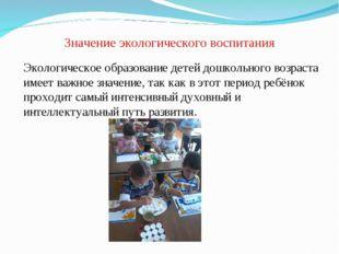 Значение экологического воспитания Экологическое образование детей дошкольног