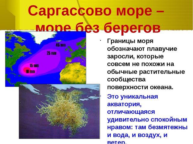 Саргассово море – море без берегов Границы моря обозначают плавучие заросли,...