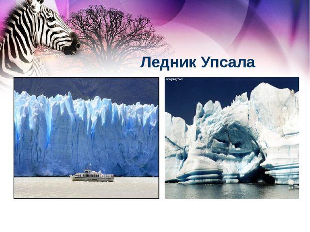 Ледник Упсала