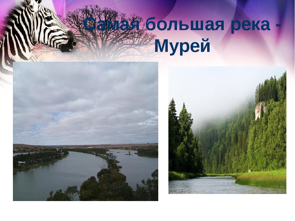 Самая большая река - Мурей