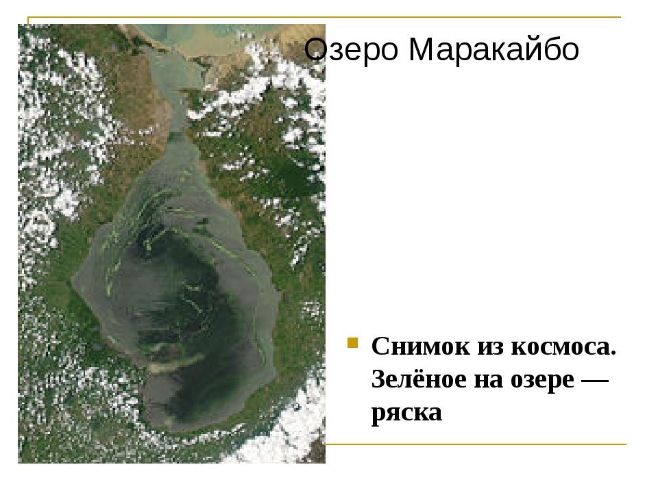 Снимок из космоса. Зелёное на озере— ряска Озеро Маракайбо