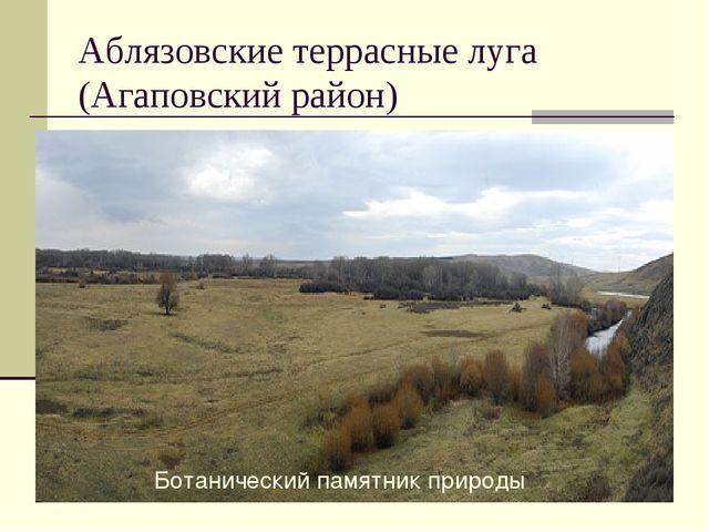Аблязовские террасные луга (Агаповский район) Ботанический памятник природы
