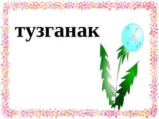 тузганак