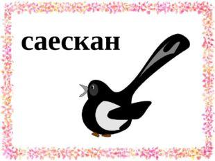 саескан