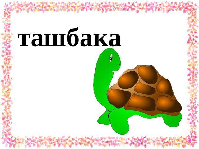 ташбака