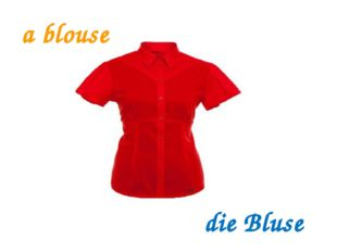 a blouse die Bluse