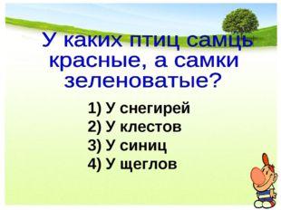 1) У снегирей 2) У клестов 3) У синиц 4) У щеглов
