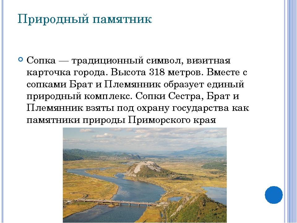 Природный памятник Сопка— традиционный символ, визитная карточка города. Выс...