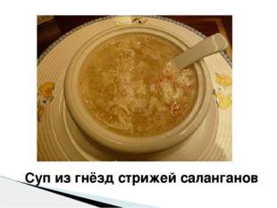 Суп из гнёзд стрижей саланганов