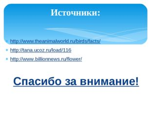 Источники: http://www.theanimalworld.ru/birds/facts/ http://tana.ucoz.ru/load
