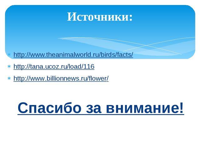Источники: http://www.theanimalworld.ru/birds/facts/ http://tana.ucoz.ru/load...
