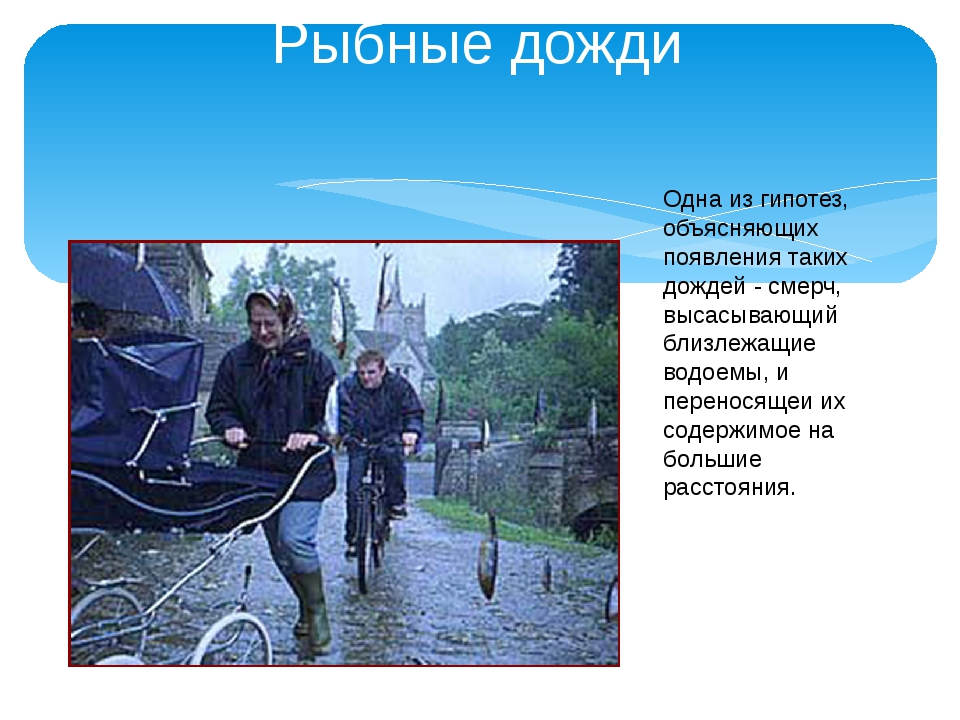 Рыбные дожди Одна из гипотез, объясняющих появления таких дождей - смерч, выс...