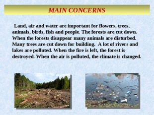 MAIN CONCERNS Land, air and water are important for flowers, trees, animals,