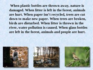 When plastic bottles are thrown away, nature is damaged. When litter is left