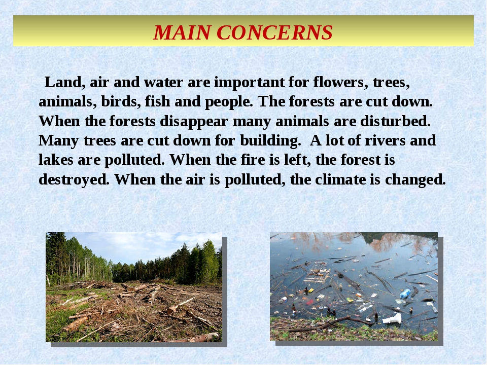 MAIN CONCERNS Land, air and water are important for flowers, trees, animals,...