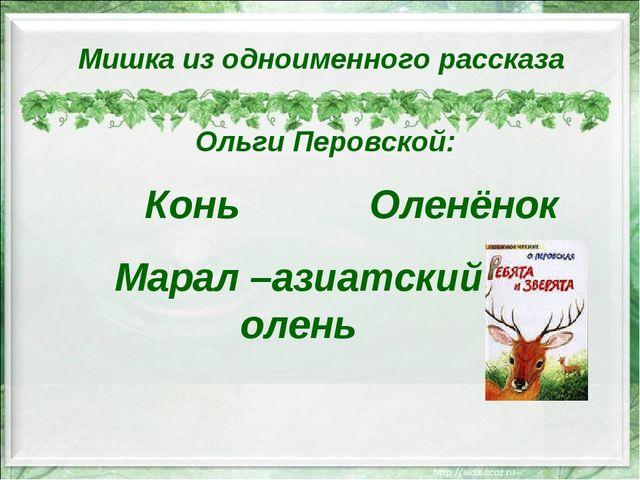 Конь Мишка из одноименного рассказа Ольги Перовской: Марал –азиатский олень О...